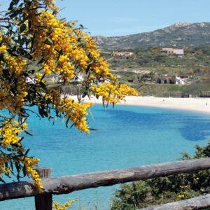 Isola Rossa Holidays